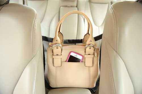 Car-Cache-with-Purse