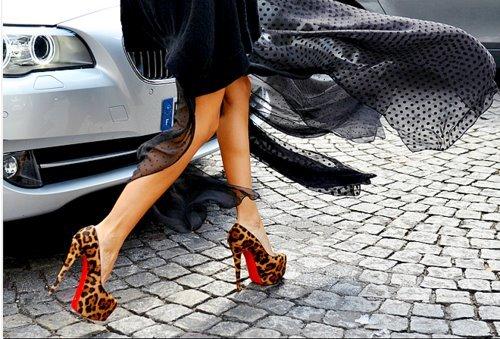 animal-print-car-girl-shoes-Favim.com-446510