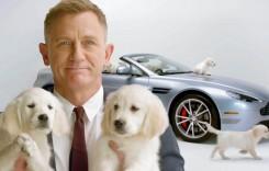 Bond. James Bond. Martin. Aston Martin. Căței. Mulți căței.