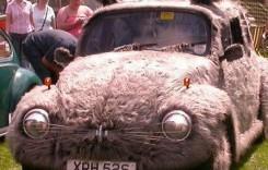 Este mai mult decât o mașină. Este mașina – iepuraș!