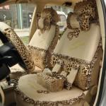accesorii masini