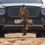 Bentley Bentayga șoim (12)