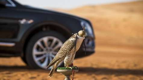 Tacâmuri de argint și kit pentru șoimi în portbagaj – Bentley Bentayga