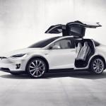 Tesla-Model-X-Falcon-Door-Issues-3
