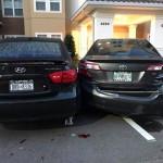 Nu stie să parcheze (3)