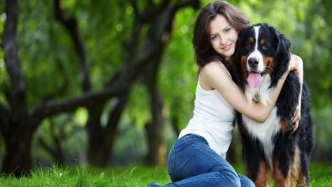 Totul despre transportul animalelor de companie și călătoria cu prietenul tău necuvântător