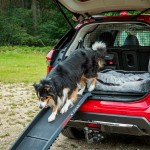 nissan-x-trail-paw-pack-11