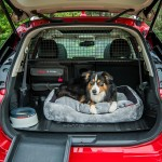 nissan-x-trail-paw-pack-12