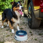 nissan-x-trail-paw-pack-3