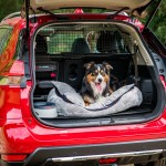 nissan-x-trail-paw-pack-7
