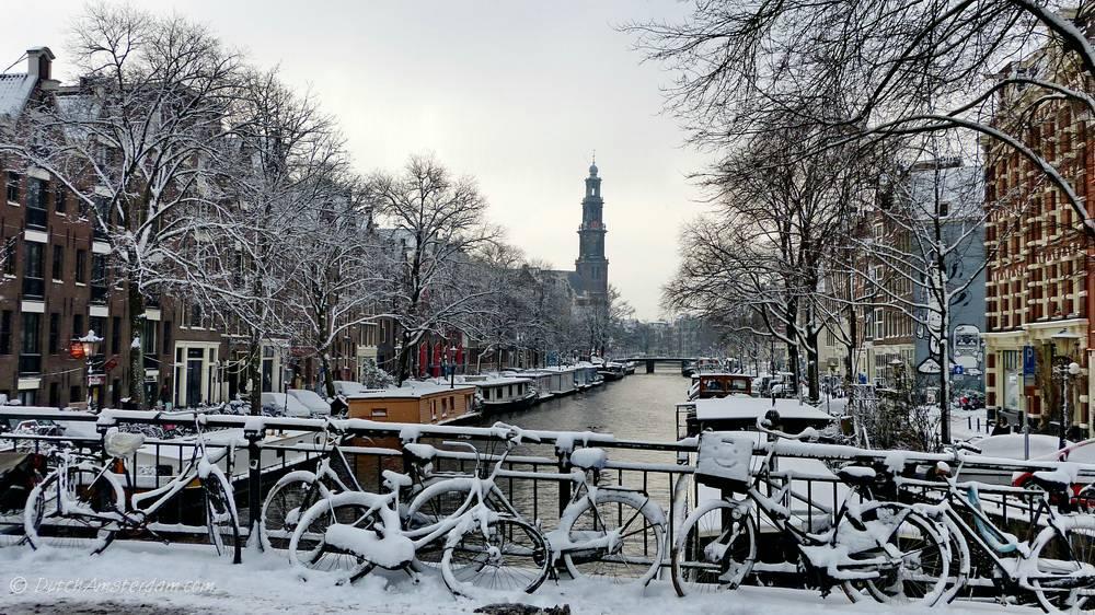 cod roșu Olanda