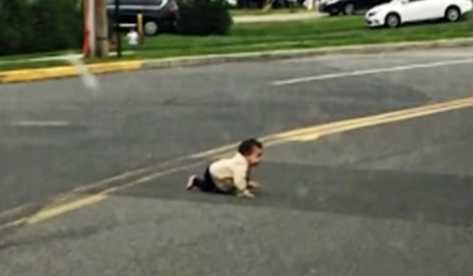 Bebe fugit