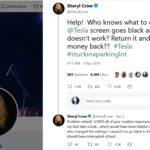 Elon Musk Sheryl Crow