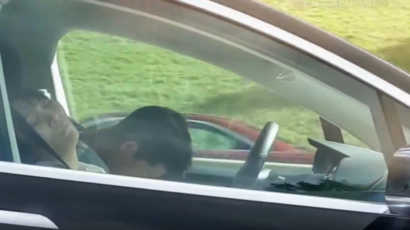 Tesla doarme
